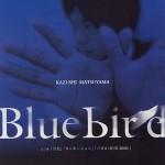 matsuyama_bb